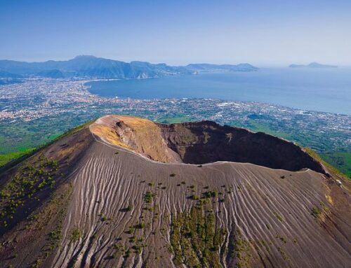 TRANSFER FROM NAPLES TO VESUVIUS + LUNCH EXPERIENCE