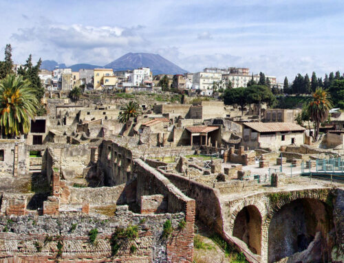 TRANSFER TO HERCULANEUM RUINS AND VESUVIUS + LUNCH EXPERIENCE